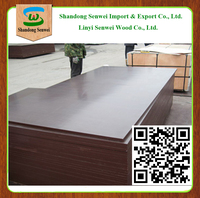 AA Grade Phenolic Film Faced Plywood Board for Construction