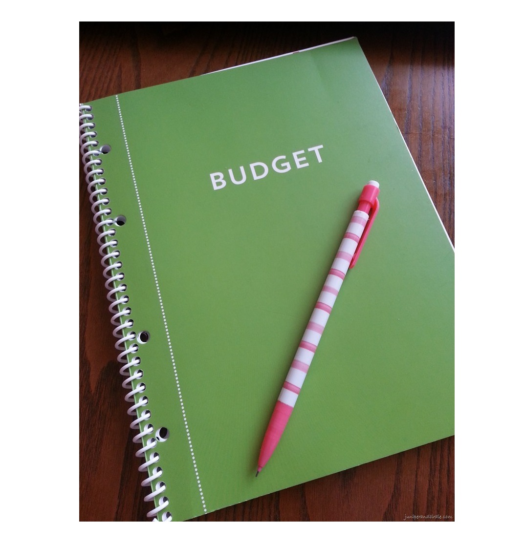 Monthly Budget Planner Bill Organizer with Pockets
