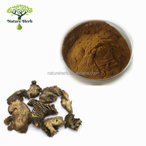 100% Natural Black Cohosh P.E. 10:1 Powder