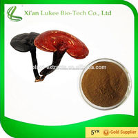 reishi mushroom extract,ganoderma extract health benefit,inner power food supplement