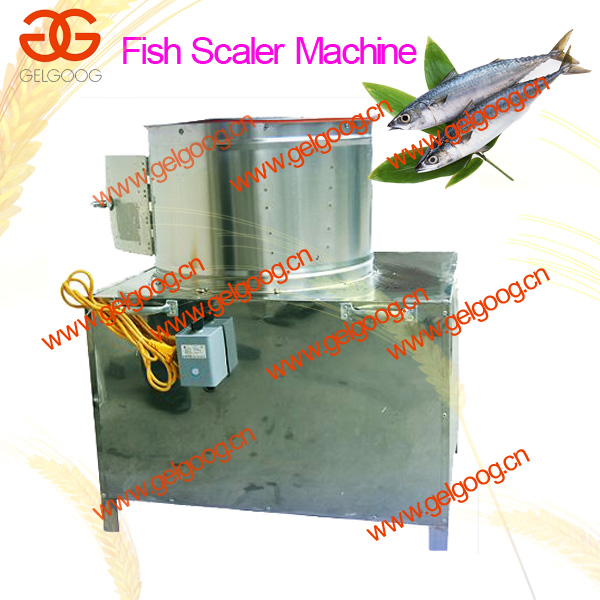 fish processing equipment/ fish scale remover/ fish scaling machine