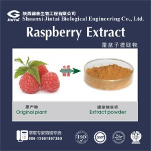 High Quality Natural Raspberry extract 10:1