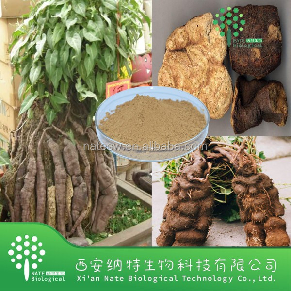 Natural Polygonum Multiflorum Thunb extract and Radix polygoni mulitiflori P.E.