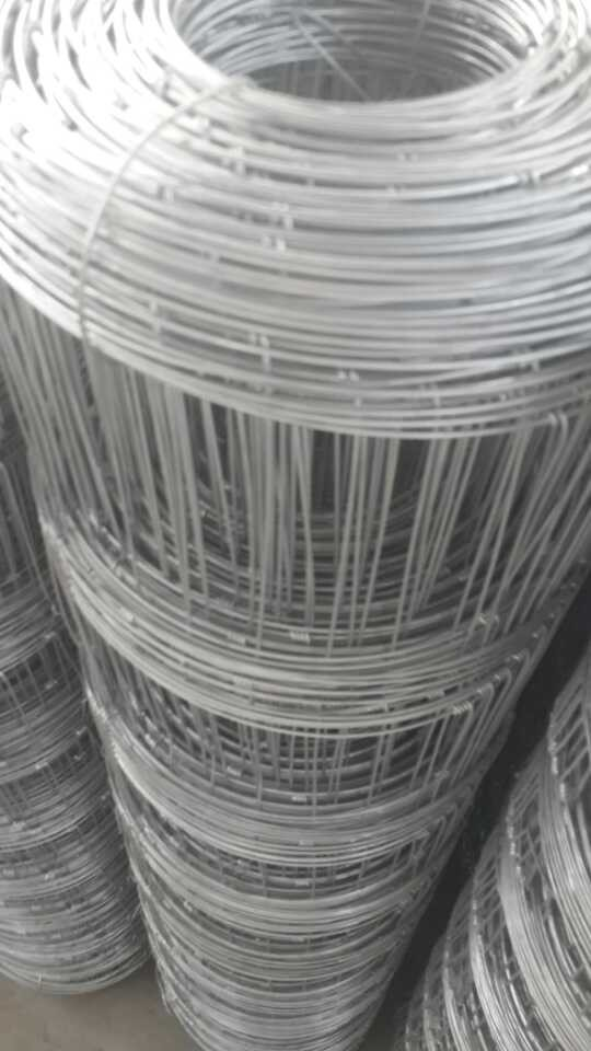 Cattle Fence, galvanized Field Fence, grassland fence / prairie fence wire mesh/ Kraal Iron wire net