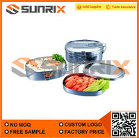 Stainless Steel Fancy Double Lunch Box