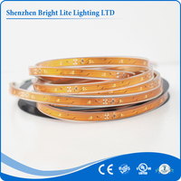 High bright led strip Cold White 3528 IP66 30led high cri led strip