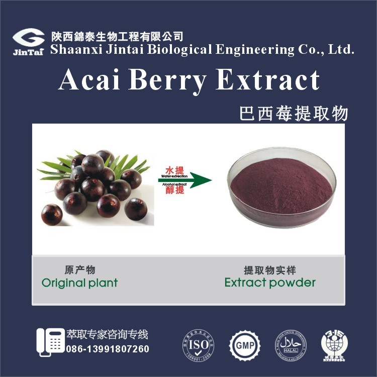 pure herb bulk acai berry capsule raw material extract powder