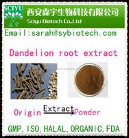 100% Herbal Dandelion Root Extract Powder