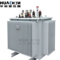 S13 series new technologies energy conservation oil type distribution transformer