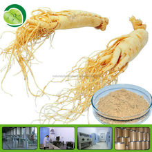 100% organic ginseng root extract / ginseng prices 2014 powder