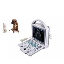 Veterinary Laptop Cow Ultrasound Scanner for Pregnancy Test