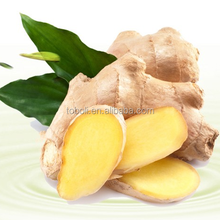 ginger root for sale