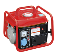 Gas generator/Cheap generator/Small generator 950