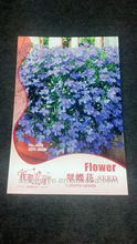 flower seed packet, flower seed paper packet