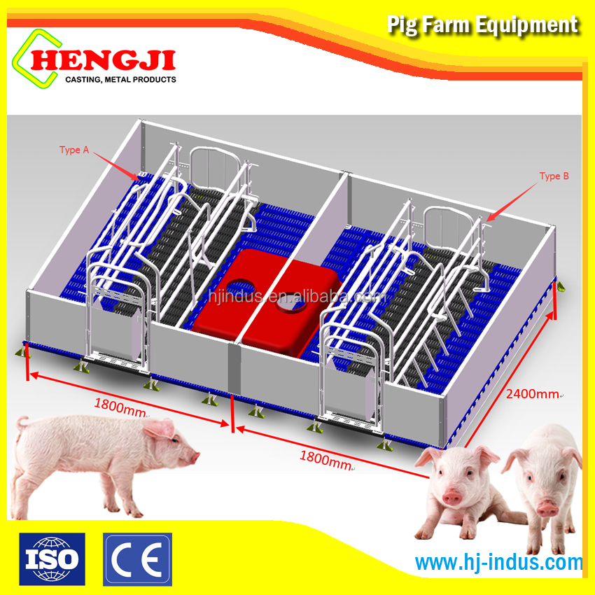Pig farm in india farrowing crates for pigs