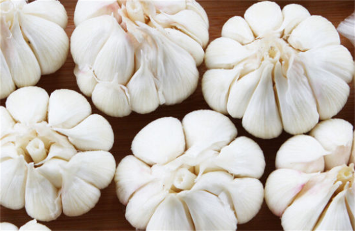 cheap custom made brand fashion 5.5cm fresh garlic natural white garlic