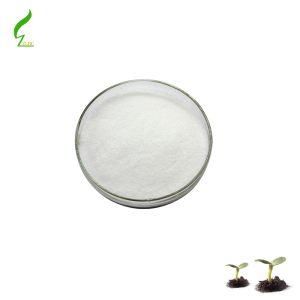 Natural blueberry extract / Pterostilbene in hot sale