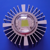 The Most Complete 50W Led Industrial Led Light Module with heat Sink