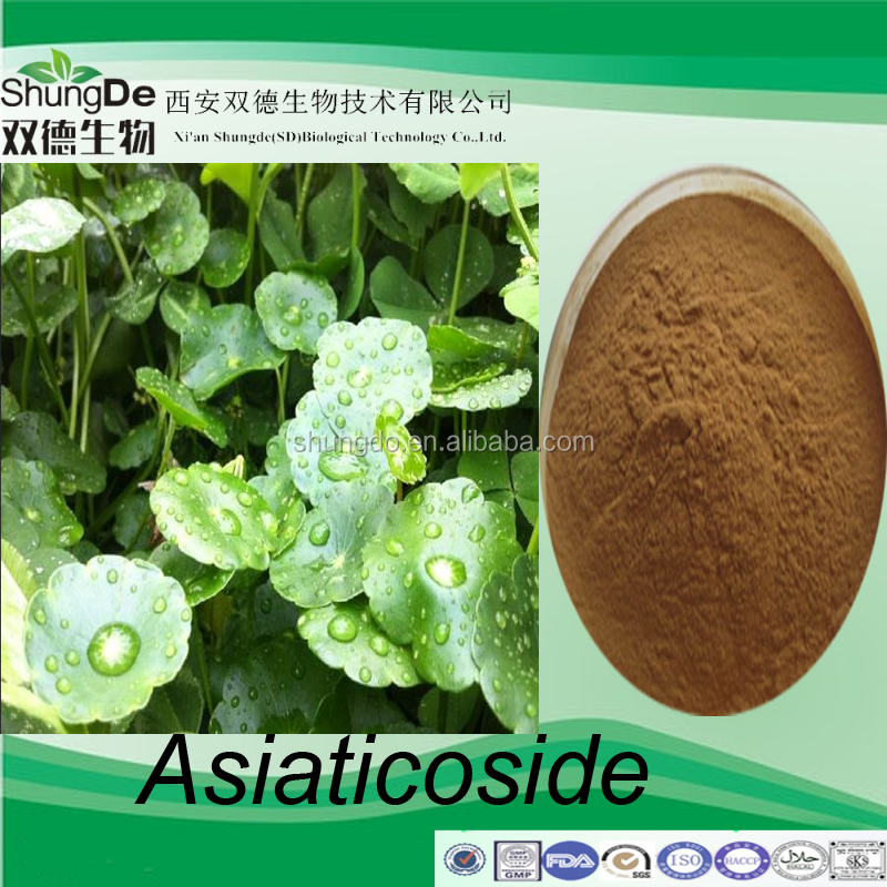 Factory supply gotu kola extract powder/Asiatic Pennywort Herb p.e /Talape extract