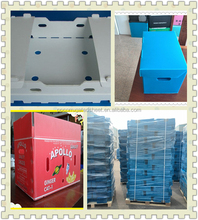 PP corrugated plastic shipping box