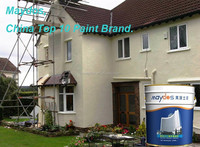Maydos exterior elastic paint asian paints wall paint