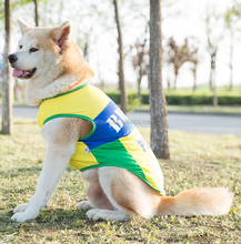 football sport XXXL clothing for dog with good price