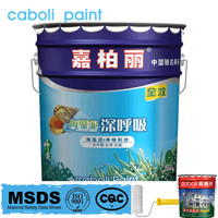 Caboli chemical resistance glossy acrylic wall paint colors company names