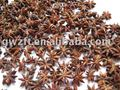 7-6 Chinese star aniseed