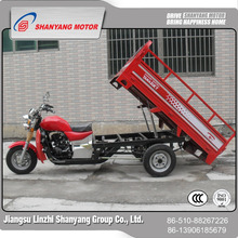 red hot sale 150CC gasoline motorized scooter trike gasoline 200cc three tyres cargo motorbike