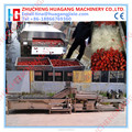 Hihg efficient vegetable and fruit cleaning line with CE