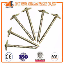 Electric Zinc Plated smooth shank umbrella head roofing nail