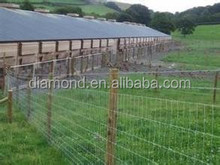Farm Animals Enclosure Fence/Wire Cattle Mesh Fence
