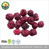 Golden Supplier freeze dried blackberry fruit