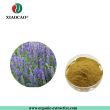 Chinese Traditional Herb Remove blood stasis Plant Achyranthes Bidentata extract