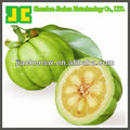 Garcinia Cambogia Extract Powder 60% HCA as weight loss supplement, 40%~60% Hydroxycitric Acid HCA