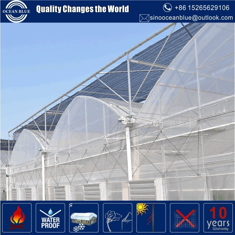 China manufacturer agricultural plastic greenhouse with best quality and low price