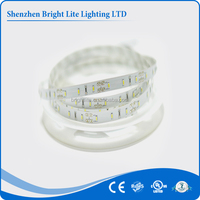 3014 Waterproof IP65 cold white 120LED UL certificate mini led