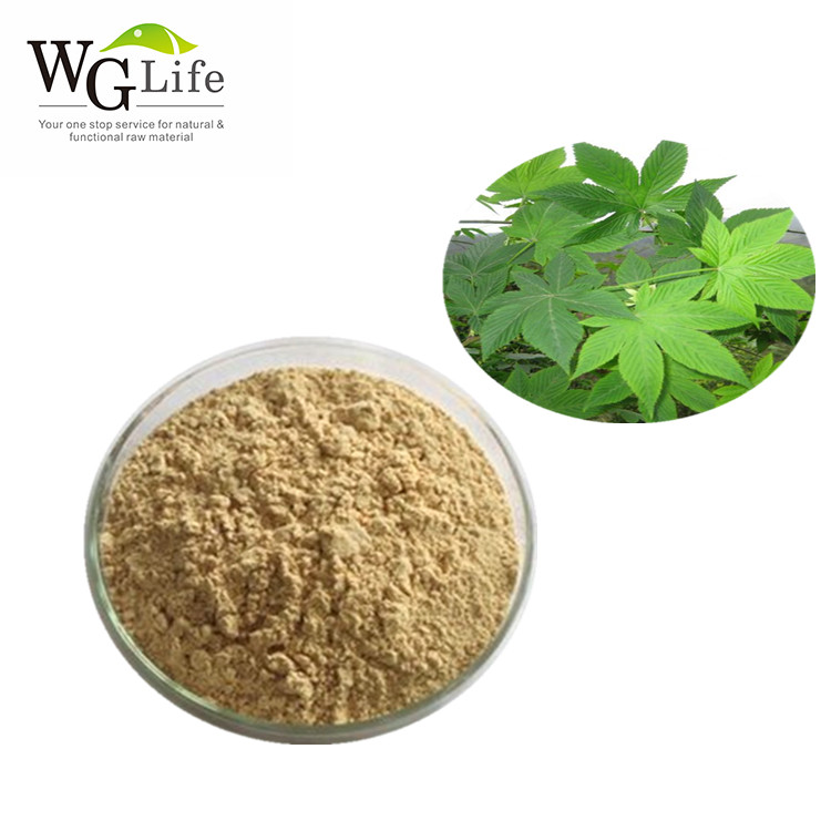 Eco-Friendly natural sweetener sweet tea leaf extract powder