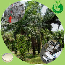 Best price high quality saw palmetto fruit saw palmetto extract