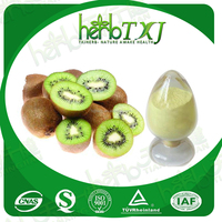 Factory supply 100% natural fruit flavor Kiwi fruit powder