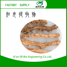 SR Zhimu Extract/anemarrhenae Asphodeloides Extract,Anemarrhena Root Extract Powder/high Quality Rhizoma Anemarrhenae In Stock