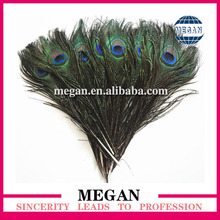 wholesale High quality hobby lobby peacock feathers
