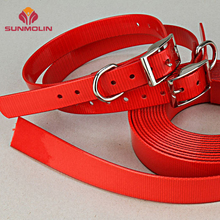 Durable tpu coated webbing design pet training collar for dog/cat