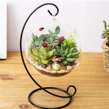 China bulk items home decoration hand made round Terrarium Glass with two holes