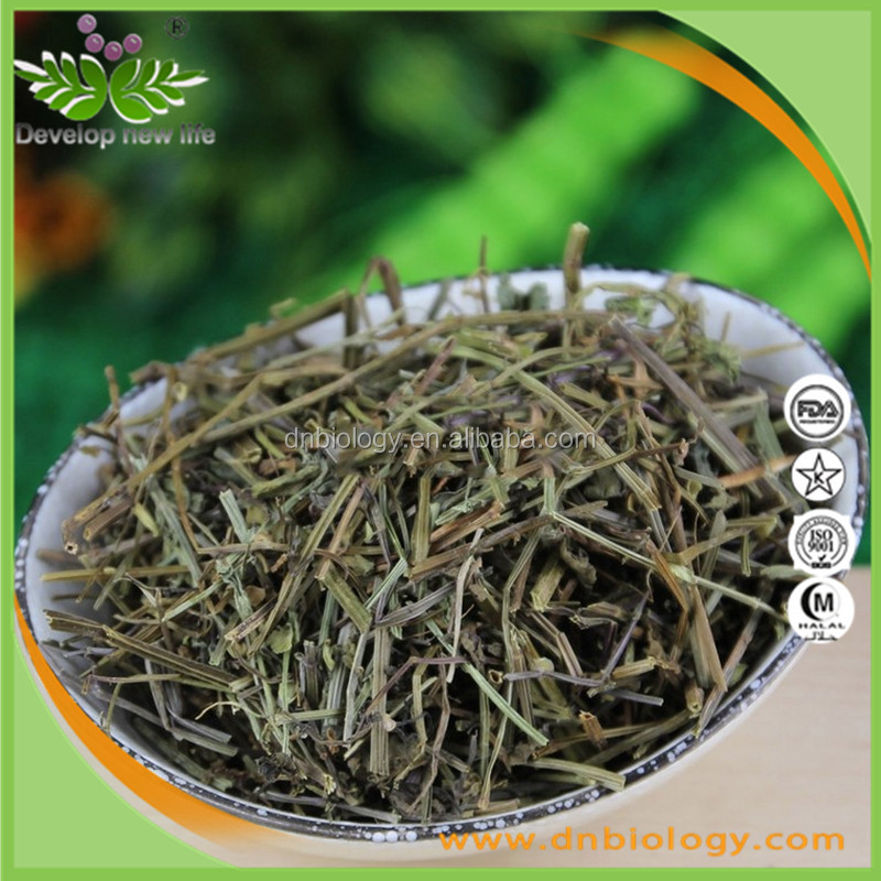 Good price Scutellaria barbata D. Don,Scutellaria Barbata Extract with for inflammation and traumatic injury