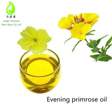 OEM/ODM Service Customized Brand Evening Primrose Oil Seed Oil Contain Vatimin E Free Sample