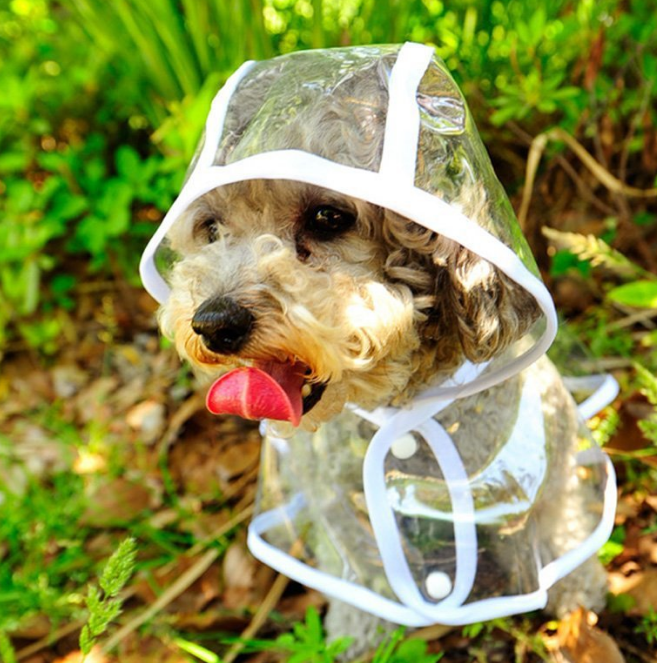 Hot Wholesale Dog Hooded Poncho Transparent Waterproof Clothes Pet Clothes Plastic Dog Raincoat