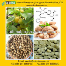 Bitter Apricot Seed Extract, Amygdalin 98%, CAS NO: 29883-15-6