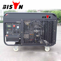 BISON(CHINA)Air Cooled 2 Cylinder Battery Powered Diesel Generator 10kw