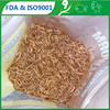 /product-detail/organic-fish-feed-mealworm-fish-feed-ingredients-60208455660.html